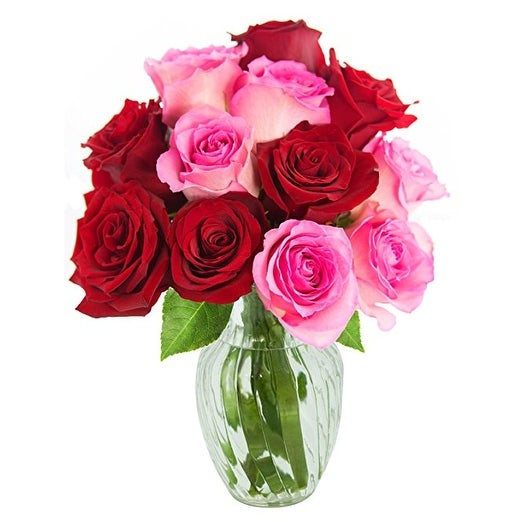 KaBloom: Bouquet of 12 Red and Pink Roses (Farm-Fresh, Long-Stem) with Vase