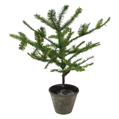 "17"" Green Artificial Mini Pine Tree in Paper Mache Pot"