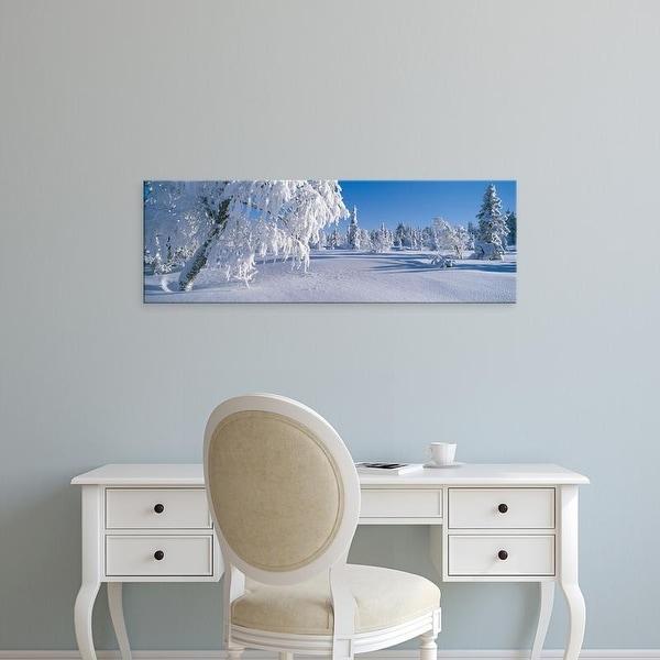 Easy Art Prints Panoramic Images's 'Winter Trees Sweden' Premium Canvas Art