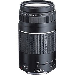 Canon EF 75-300mm f/4-5.6 III Zoom Lens EOS Rebel T3 T5 T3i XSi XTi SL1 T6