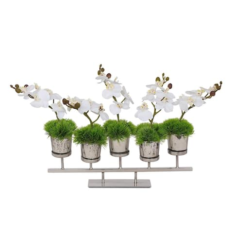 Real Touch White Phalaenopsis Orchids and Moss in Vases with Stand - 20W x 6D x 12H