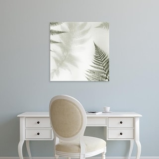 Easy Art Prints Alan Blaustein's 'Ferns No. 2' Premium Canvas Art