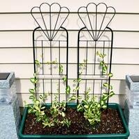 Sunnydaze 32-Inch Durable Metal Wire Flower Design Garden Trellis - Set of 2