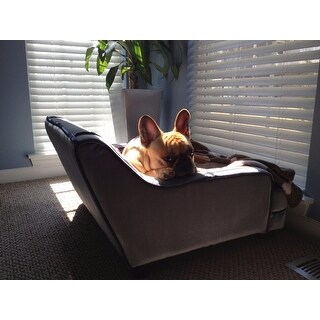 Enchanted Home Pet Mid-century Modern Pet Bed