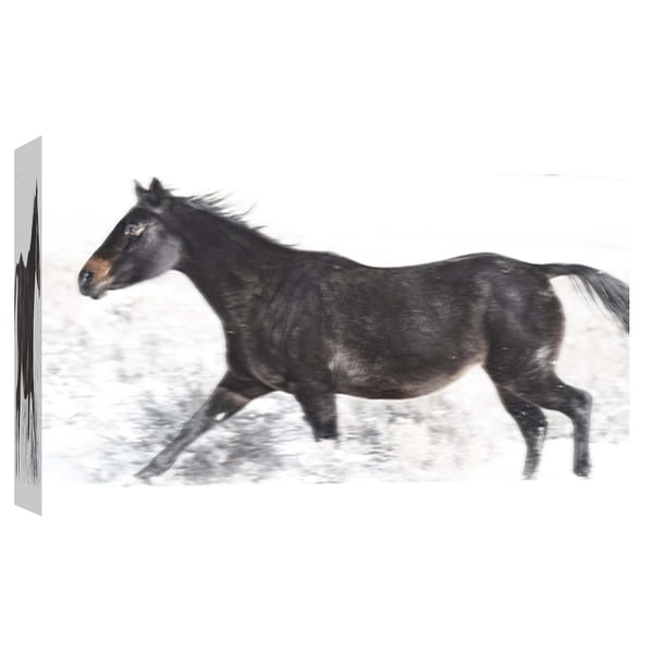 """PTM Images 9-101867 PTM Canvas Collection 8"""" x 10"""" - """"Horse Fort Ranch 19"""" Giclee Horses Art Print on Canvas"""