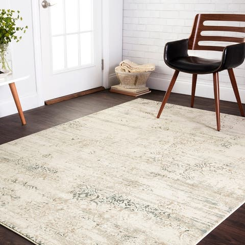 Alexander Home Augustus Persian Inspired Distressed Area Rug