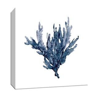 """PTM Images 9-147704  PTM Canvas Collection 12"""" x 12"""" - """"Sea Coral I"""" Giclee Nautical and Ocean Art Print on Canvas"""