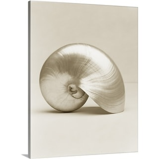 Premium Thick-Wrap Canvas entitled Pearlised nautilus sea shell, close-up