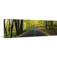 Premium Thick-Wrap Canvas entitled Leaf Strewn Road
