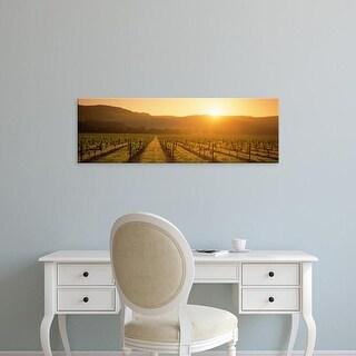 Easy Art Prints Panoramic Images's 'Vineyard, Napa Valley, California, USA' Premium Canvas Art
