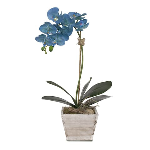 Real Touch Blue Phalaenopsis Orchid in White Wash Wood Planter - 11W x 6D x 22H