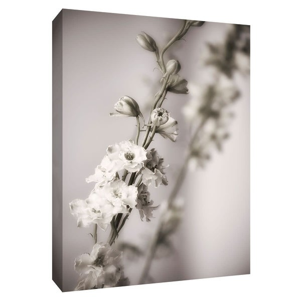 """PTM Images 9-148668 PTM Canvas Collection 10"""" x 8"""" - """"Jardin d' Argent I"""" Giclee Flowers Art Print on Canvas"""