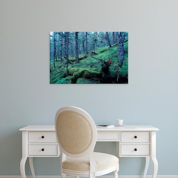 Easy Art Prints Paul Souders's 'Kenai Fjords Rainforest' Premium Canvas Art