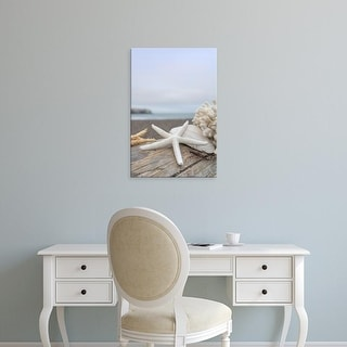 Easy Art Prints Alan Blaustein's 'Crescent Beach Shells 14' Premium Canvas Art