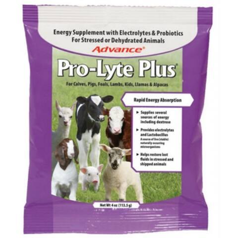 Manna Pro 0094610371 Advance Pro-Lyte Plus, Energy Supplement, 4 Oz