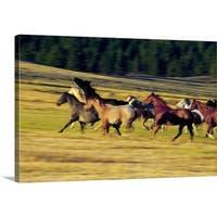 Premium Thick-Wrap Canvas entitled Herd of horses running, Oregon, united states,