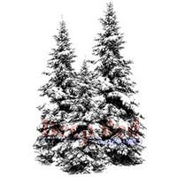 """Winter Pines - Deep Red Cling Stamp 2""""X3"""""""