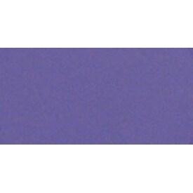 Violet Shade - Panpastel Ultra Soft Artist Pastel 9Ml