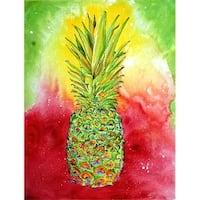 Pineapple Flag Garden Size