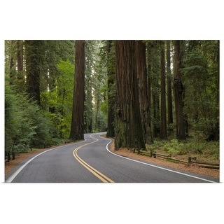 """""""USA, California, road through Redwood forest"""" Poster Print"""