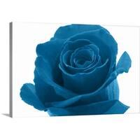 Premium Thick-Wrap Canvas entitled Blue Rose