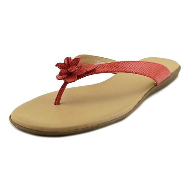 7e2d60caa4c0 Shop Aerosoles Branchlet Women Open Toe Synthetic Orange Flip Flop ...