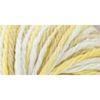 Golden Oak - Home Cotton Yarn - Multi Cone