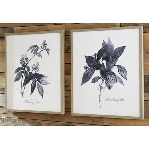 Efren Botanical Framed Canvas Wall Art Set - Set of 2