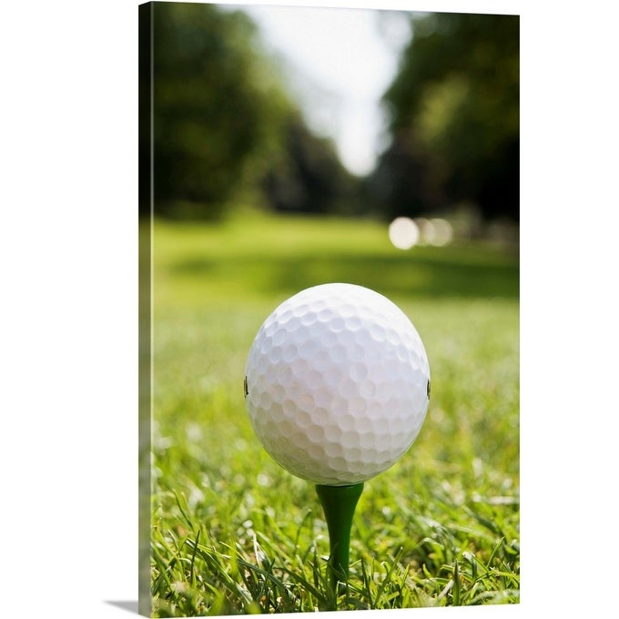 Shop Golf Ball On Tee Canvas Wall Art Overstock 16378739