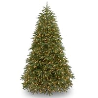 Shop 3-foot Jersey Fraser Fir Tree with Battery-operated ...