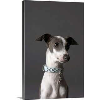 """""""Dog looking away"""" Canvas Wall Art"""