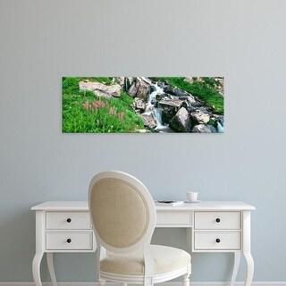 Easy Art Prints Panoramic Images's 'Alpine garden, Prospectors Peak, Grand Teton National Park, Wyoming' Canvas Art