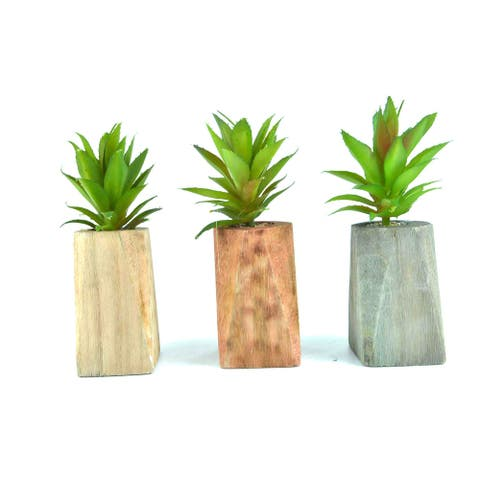 3 Pieces Artificial Plants Succulents with Wooden Base