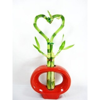 9GreenBox - Lucky 'Bamboo' Heart Style with Hollow Ceramic Vase