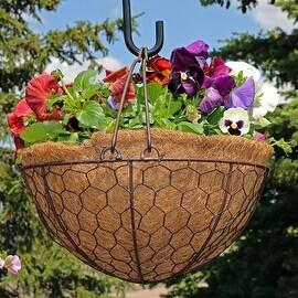Sunnydaze Eggshell Hanging Flower Basket w/ Coco Liner, 14 Inch Diameter