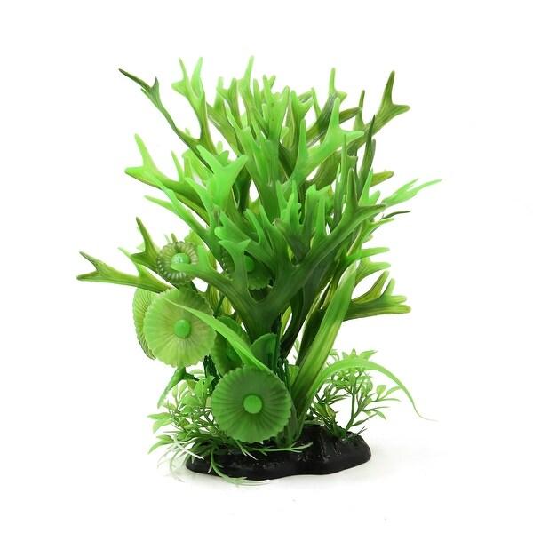 Shop Green Black Ceramic Base Plastic Plant Aquarium Terrarium