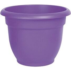 "Bloem 12"" Ryl Lilac Ariana Pot"