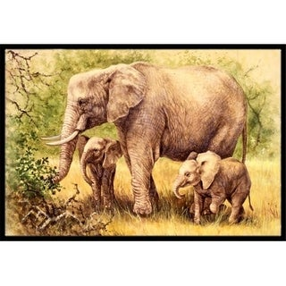 Carolines Treasures BDBA0112JMAT Elephants by Daphne Baxter Indoor or Outdoor Mat 24 x 36