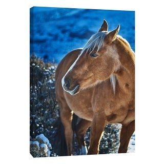 "PTM Images 9-108377  PTM Canvas Collection 10"" x 8"" - ""Horse Fort Ranch 8"" Giclee Horses Art Print on Canvas"