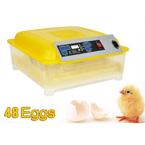 Egg Incubator Hatcher 48 Digital Clear Temperature Control Automatic Turning New 110V