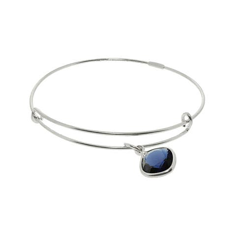 "Alex And Ani Women's Dark Indigo Truth Color Therapy Bangle Bracelet - 7"" - Silver"