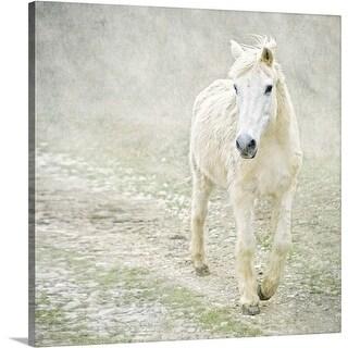 Premium Thick-Wrap Canvas entitled White horse walking along stony path