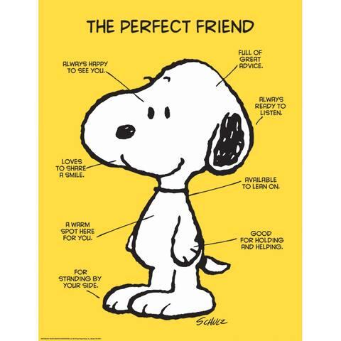 Peanuts The Perfect Friend 17X22