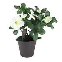 """8"""" Artificial White Begonia with Dark Coffee Brown Pot - Green"""