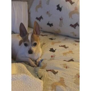 Pointehaven Winter Dogs Heavy Weight Cotton Flannel 3-piece Duvet Set