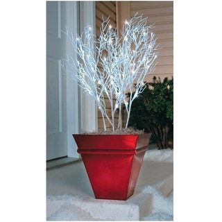 Celebrations 78655-71 LED Branches Christmas Pathway Markers, 4 Piece, 96 Lights
