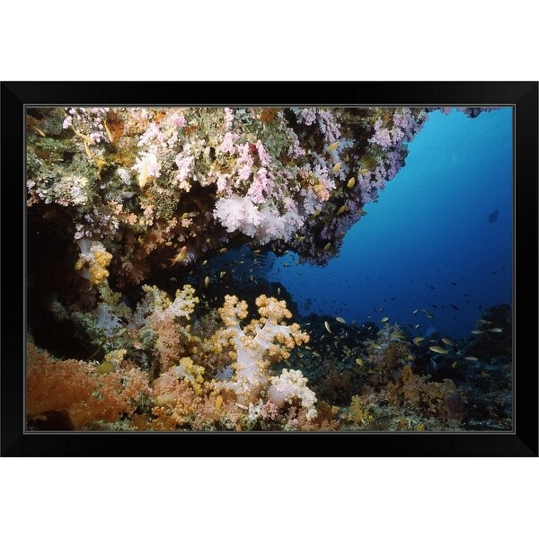"""""""Underwater coral wall with tropical fish and invertebrates, Maldives"""" Black Framed Print"""