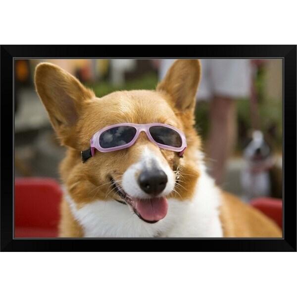 """A Pembroke Welsh Corgi sitting in a wagon wearing sunglasses"" Black Framed Print"