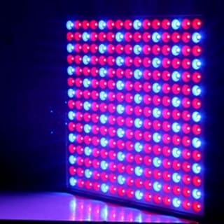 Link to 225-LED Red & Blue Light Indoor Garden Plant Grow Light Similar Items in Grow Lights