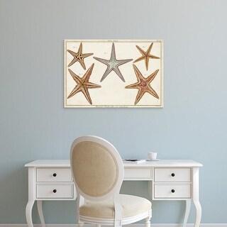 Easy Art Prints Denis Diderot's 'Starfish Naturelle I' Premium Canvas Art